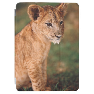 Young lion sitting iPad air cover