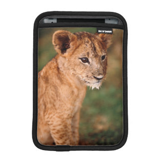 Young lion sitting iPad mini sleeve