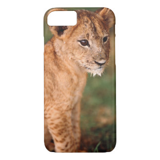 Young lion sitting iPhone 7 case
