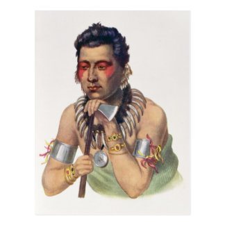 Young Ma-Has-Ka, Chief of the Iowas Postcard