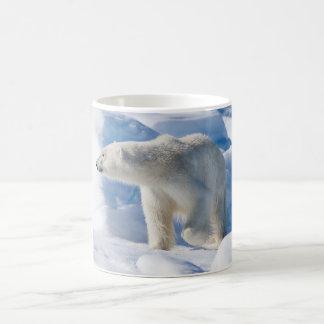 Young Male Polar Bear Coffee Mug