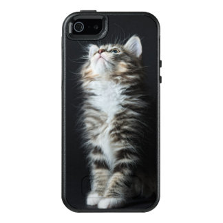 Young Male Tabby Cat OtterBox iPhone 5/5s/SE Case