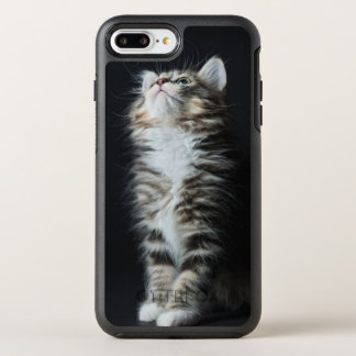 Young Male Tabby Cat OtterBox Symmetry iPhone 7 Plus Case