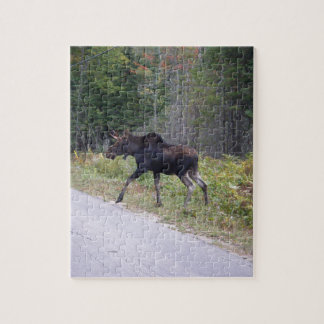 Young Moose About to Cross Road Puzzles