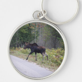 Young Moose Silver-Colored Round Key Ring
