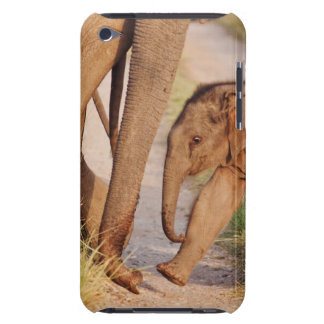 Young one of Indian Asian Elephant Barely There iPod Cover