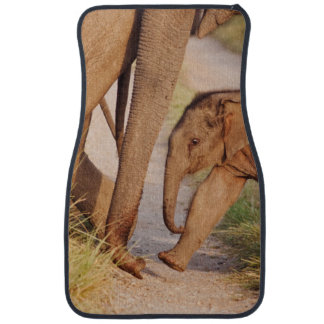 Young one of Indian Asian Elephant Car Mat