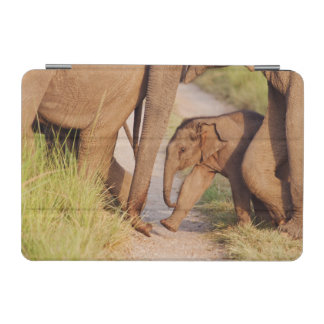 Young one of Indian Asian Elephant iPad Mini Cover