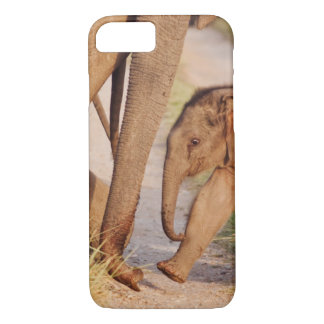 Young one of Indian Asian Elephant iPhone 8/7 Case
