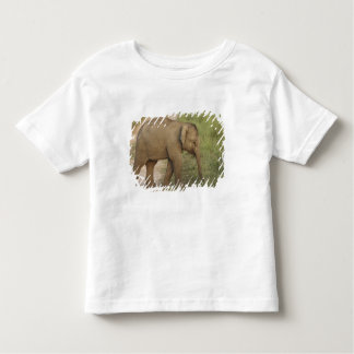 Young one of Indian / Asian Elephant on the Toddler T-Shirt