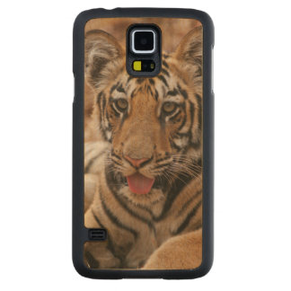 Young one of Royal Bengal Tiger Carved Maple Galaxy S5 Case
