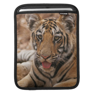 Young one of Royal Bengal Tiger iPad Sleeves