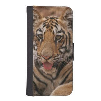 Young one of Royal Bengal Tiger iPhone SE/5/5s Wallet Case