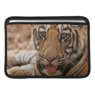 Young one of Royal Bengal Tiger MacBook Sleeves