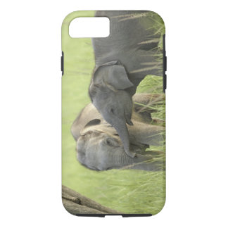 Young ones of Indian / Asian Elephant iPhone 8/7 Case