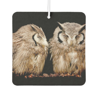 Young Owlets on Dark Background Car Air Freshener