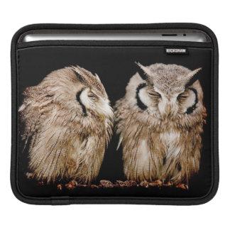 Young Owlets on Dark Background iPad Sleeve
