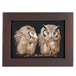 Young Owlets on Dark Background Keepsake Box