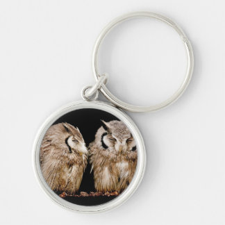 Young Owlets on Dark Background Key Ring