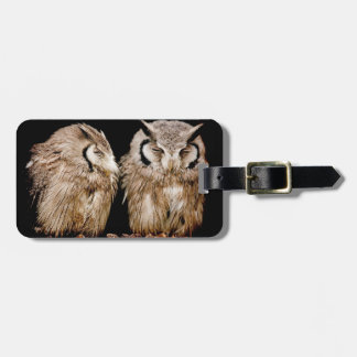 Young Owlets on Dark Background Luggage Tag