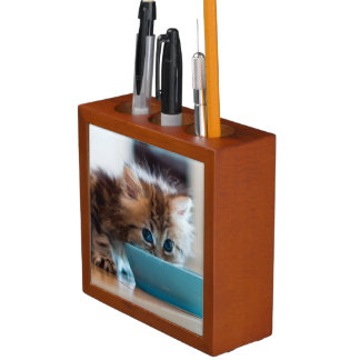 Young Persian kitten with blue eyes Desk Organiser