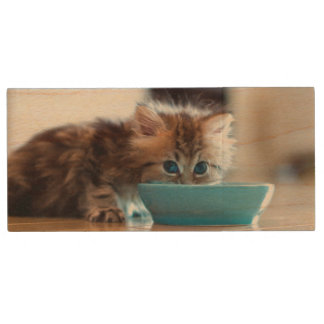 Young Persian kitten with blue eyes Wood USB 2.0 Flash Drive