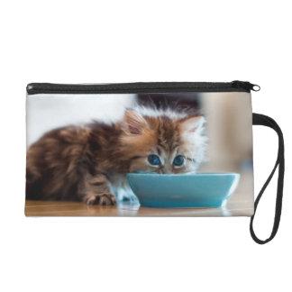Young Persian Kitten Wristlet