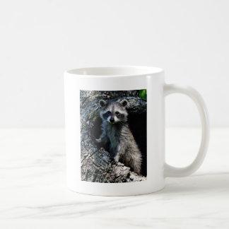 Young Raccoon Basic White Mug