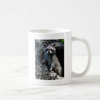 Young Raccoon Coffee Mug