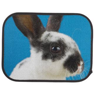 Young Rex rabbit Car Mat