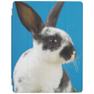 Young Rex rabbit iPad Cover