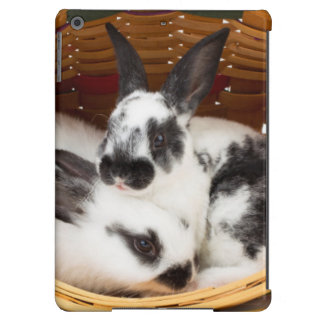 Young Rex rabbits in Easter basket 2 iPad Air Cases