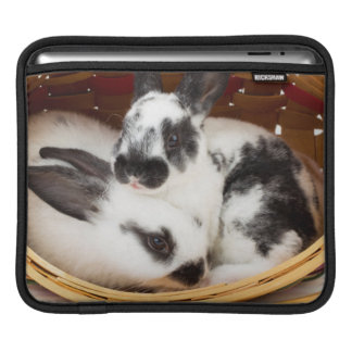 Young Rex rabbits in Easter basket 2 iPad Sleeve