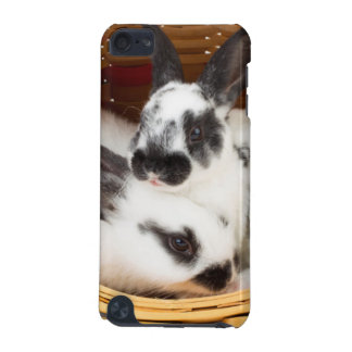 Young Rex rabbits in Easter basket 2 iPod Touch (5th Generation) Cases