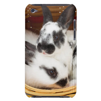 Young Rex rabbits in Easter basket 2 iPod Touch Case-Mate Case
