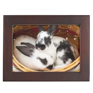 Young Rex rabbits in Easter basket 2 Keepsake Box