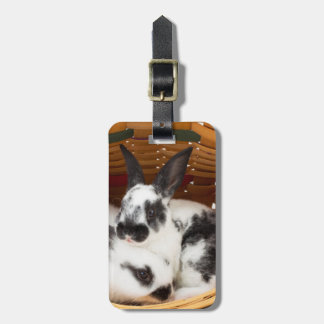 Young Rex rabbits in Easter basket 2 Luggage Tag