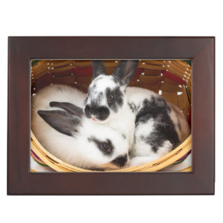 Young Rex rabbits in Easter basket 2 Memory Box