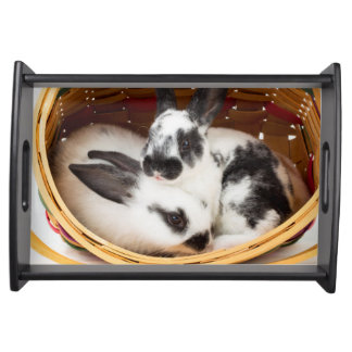 Young Rex rabbits in Easter basket 2 Serving Tray