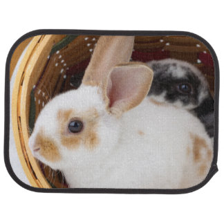 Young Rex rabbits in Easter basket Car Mat