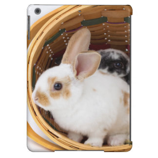 Young Rex rabbits in Easter basket Cover For iPad Air