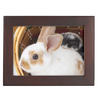 Young Rex rabbits in Easter basket Keepsake Box