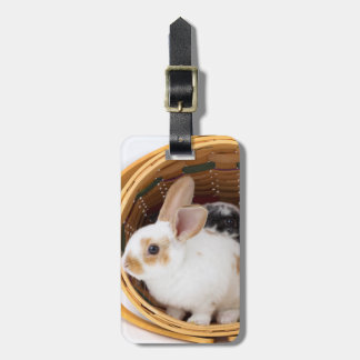 Young Rex rabbits in Easter basket Luggage Tag