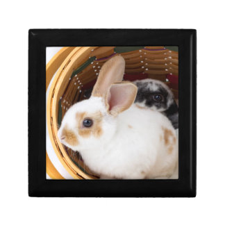 Young Rex rabbits in Easter basket Small Square Gift Box