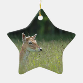 Young Richmond Park deer Christmas Ornament