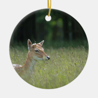 Young Richmond Park deer Round Ceramic Decoration