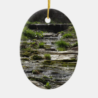 Young river christmas ornament