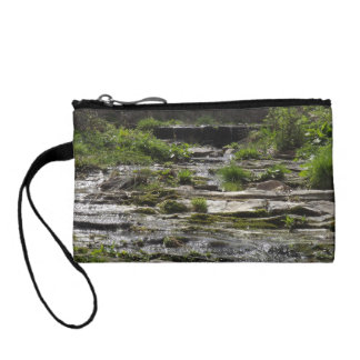 Young river coin purse