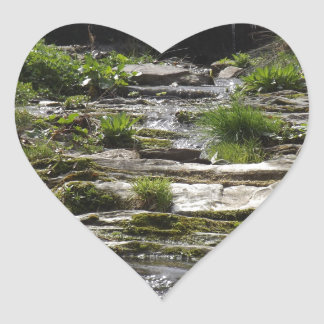 Young river heart sticker