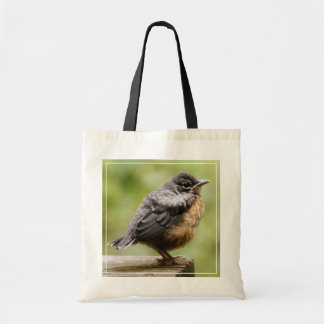 Young Robin Learning To Fly... Taking A Break On Budget Tote Bag
